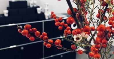 Weihnachtsaktion & Spende an Spendiert!| Kieferorthopädie Dr. Moritz Försch